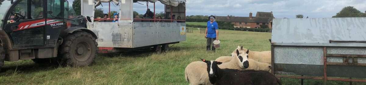 Trailer rides around the farm